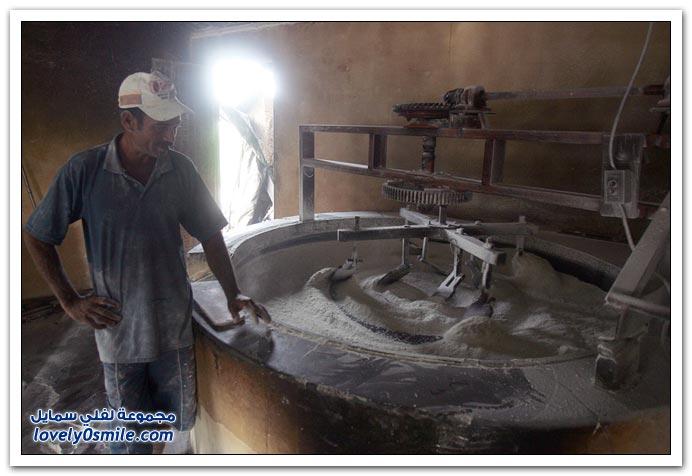 مراحل إنتاج دقيق الكسافا في البرازيل