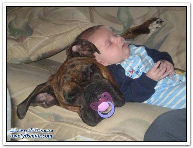 الأطفال والحيوانات الأليفة