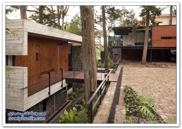 منزل فخم بين الأشجار في عاصمة غواتيمالا