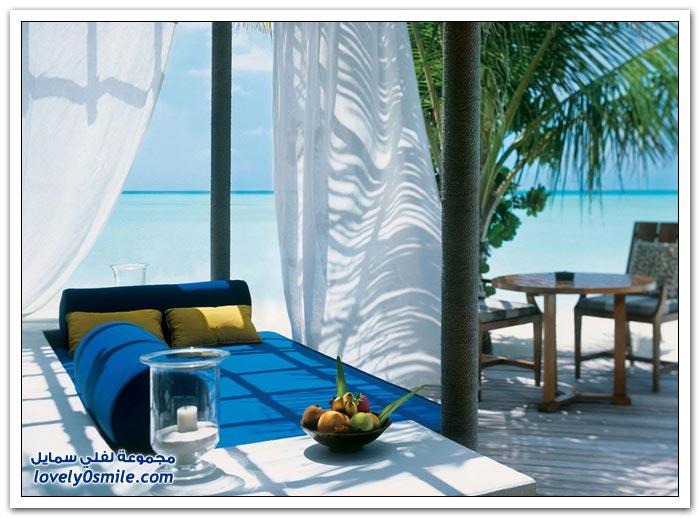 منتجع تاج إكزوتيكا ريزورت آند سبا في جزر المالديف