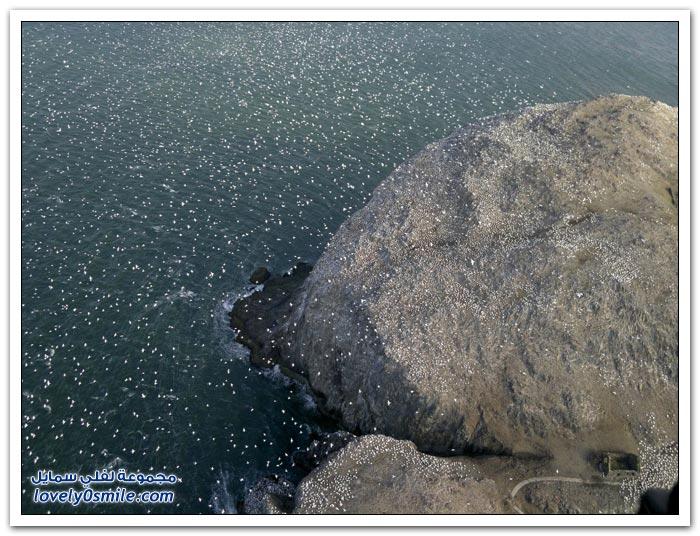 تصوير من الأعلى لمناظر حول العالم ج3