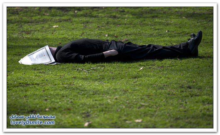 انتهاء الشتاء وبداية الربيع لعام 2012
