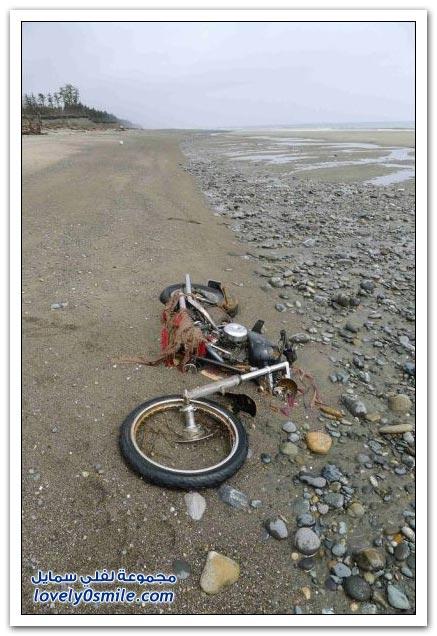 دراجة تختفي أيام التسونامي في اليابان وتظهر في كندا