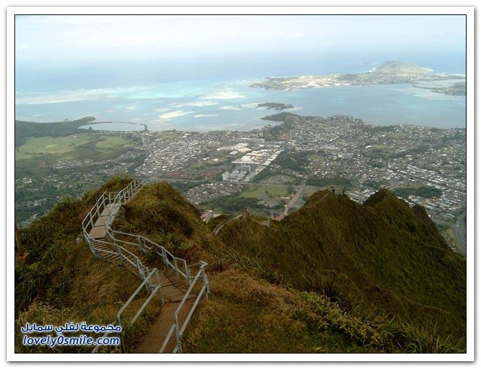سلالم الهايكو في هاواي l صُور Haiku-Stairs-in-Hawa