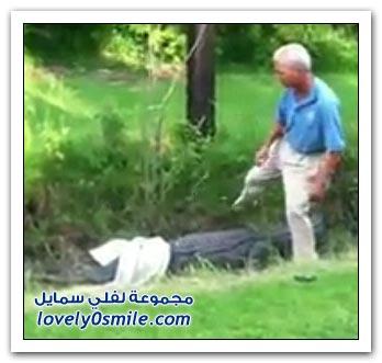فيديو: تمساح يهاجم عالم أمريكي + قصة عبدالله وعبدالله وعبدالله رااائعة