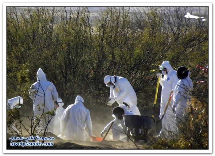 Фото REUTERS, AP, AFP, Getty Images. Война с наркокартелями в