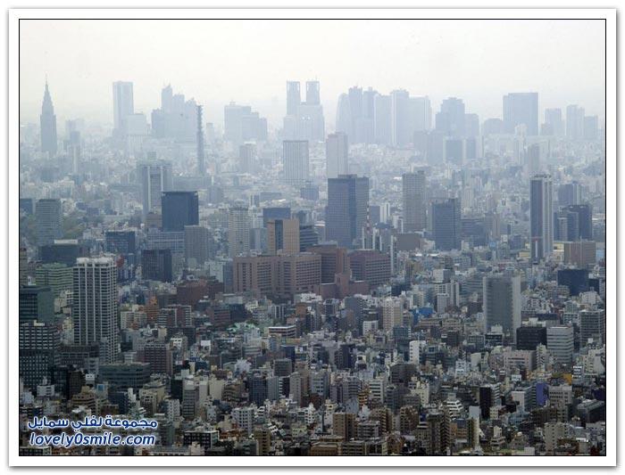 برج شجرة سماء طوكيو