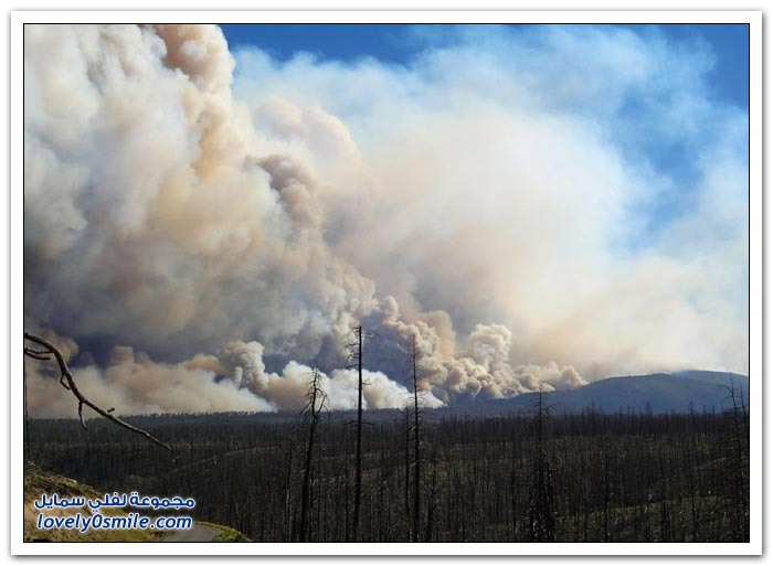 حرائق الغابات في ولاية كولورادو
