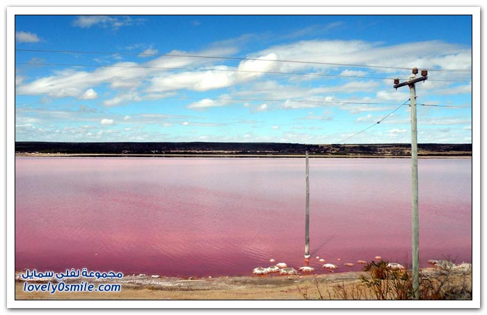 البحيرة الوردية في السنغال