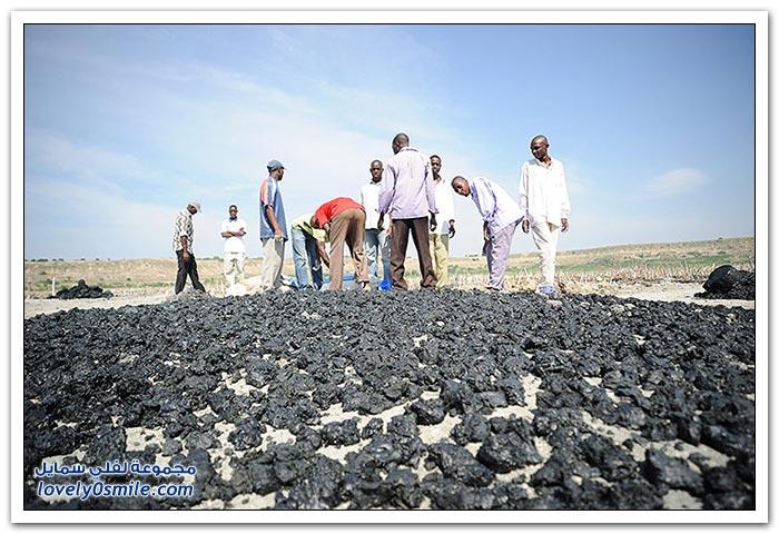 استخراج الملح في أوغندا من الطين الأسود