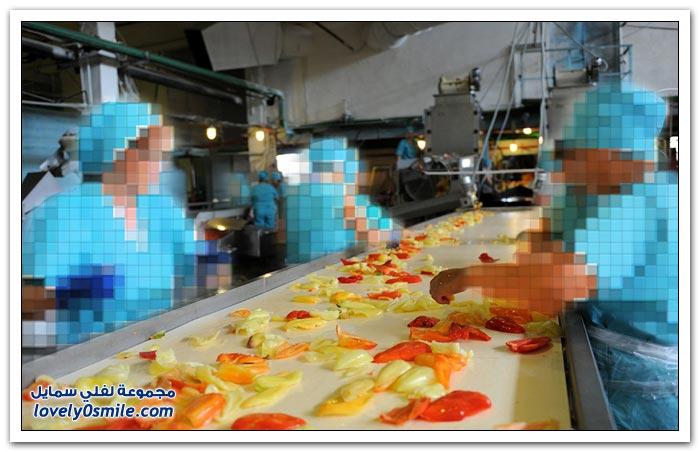 مصنع لأحد أنواع الطعام المعلب في روسيا