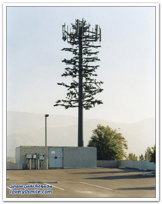 أفكار رائعة لإخفاء أبراج الاتصالات