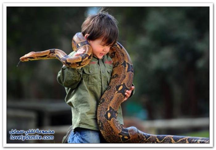 طفل استرالي صديق لأفعى وتمساح