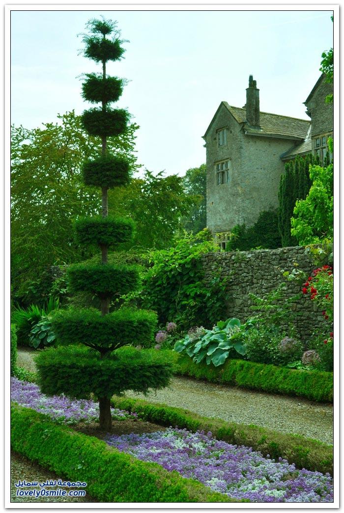 فن توباري قص أوراق الشجر بطريقة فنية في بريطانيا