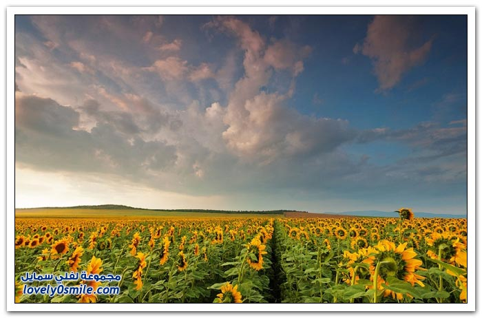 المناظر الطبيعية في بلغاريا