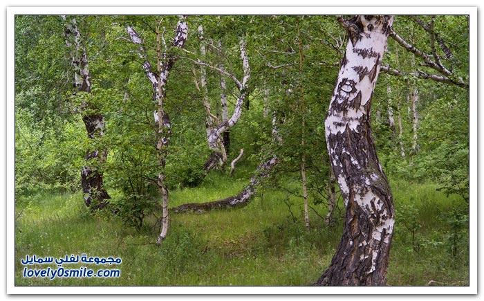 مناظر رائعة من الطبيعة حول العالم ج13