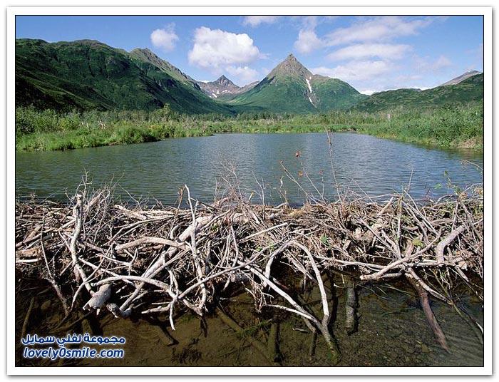 مناظر رائعة من الطبيعة حول العالم ج1