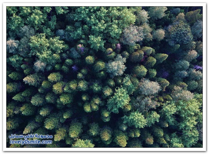مناظر رائعة من الطبيعة حول العالم ج6