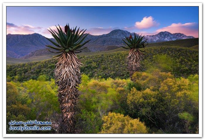 المناظر الطبيعية في جنوب أفريقيا