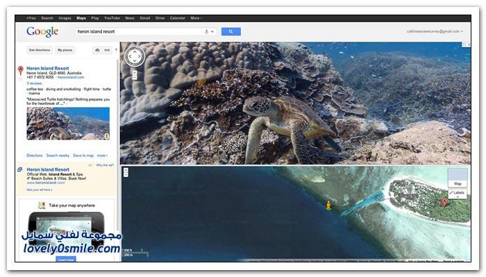 الحياة البحرية حول الشعاب المرجانية