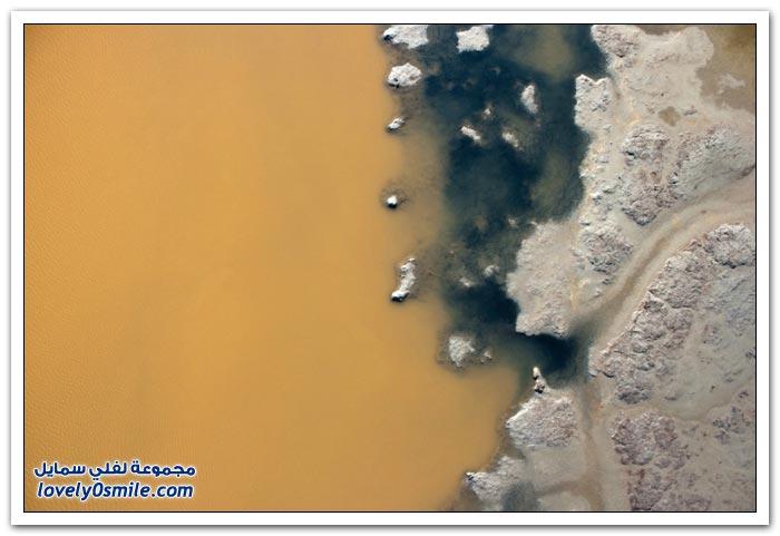 أحواض الملح في خليج سان فرانسيسكو