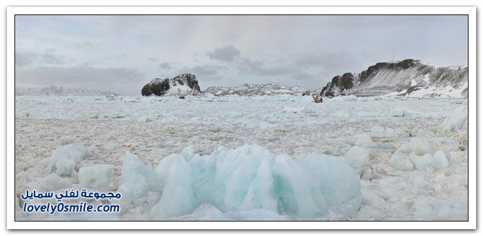 غرق سفينة في القطب الجنوبي