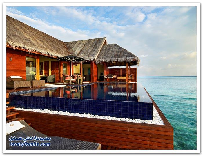 منتجع ديفا في المالديف