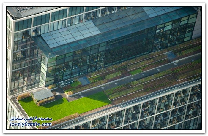 حدائق على سطوح مباني في لندن
