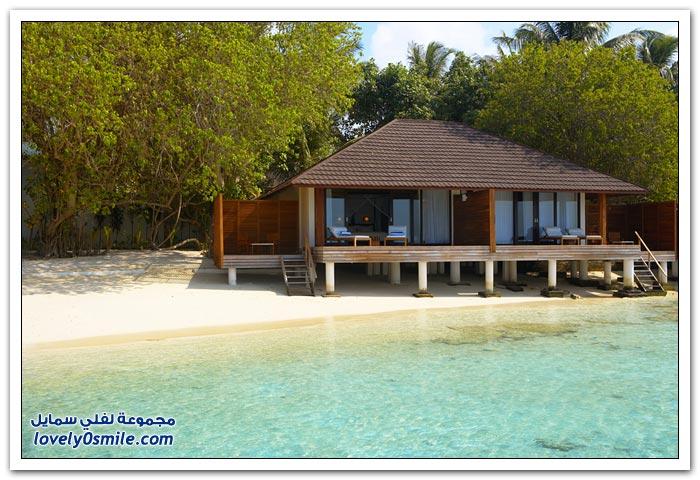 منتجع وحمام ليلي بيتش في جزر المالديف