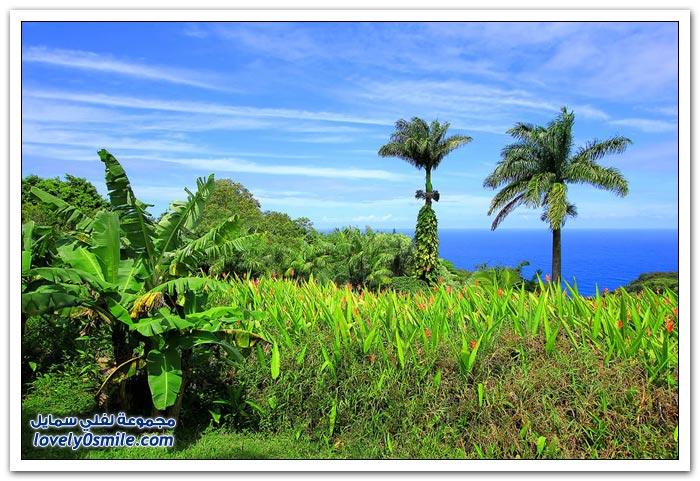 جزيرة ماوي من أجمل الجزر السياحية في العالم
