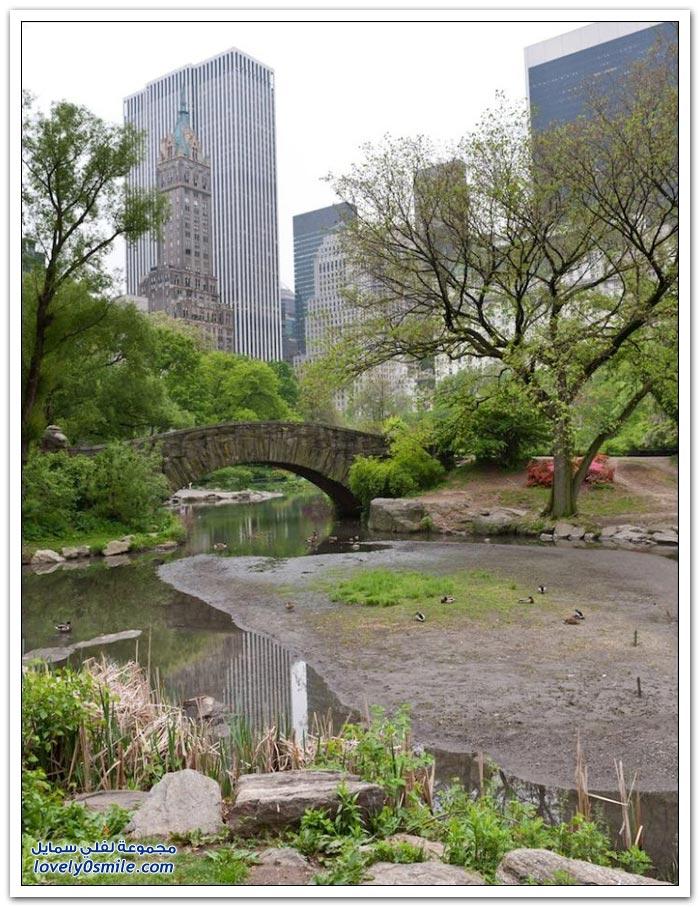 مدينة نيويورك بين الماضي والحاضر