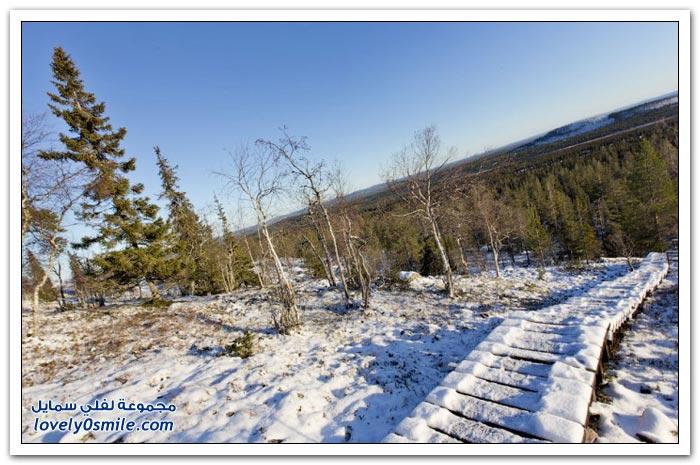 صور من شمال فنلندا