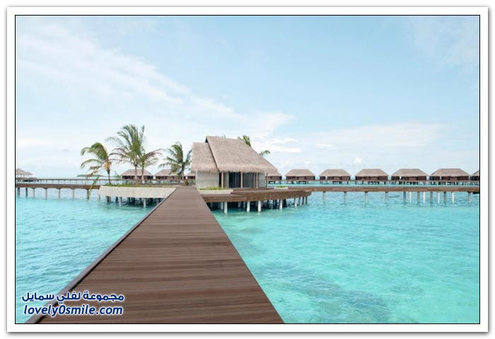 منتجع أيادا في المالديف