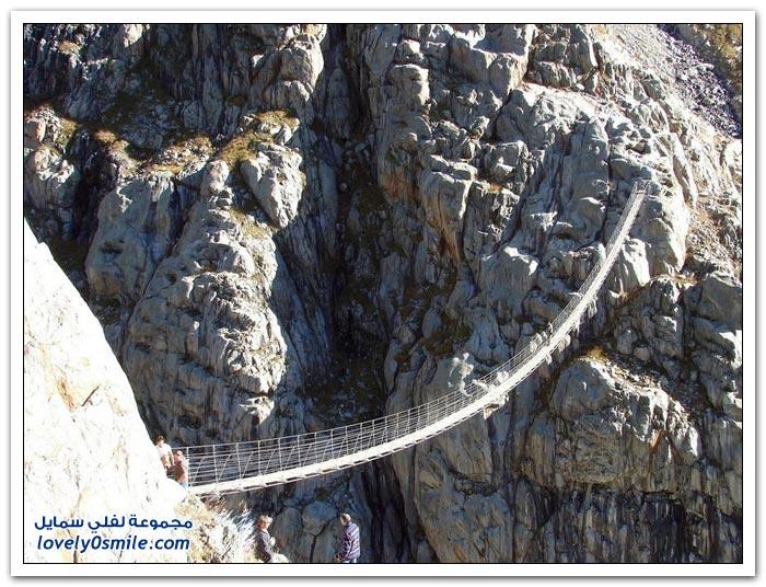 الجسور المعلقة