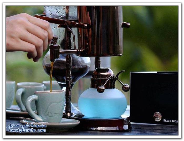أغلى قهوة في العالم تحضر من فضلات الفيلة