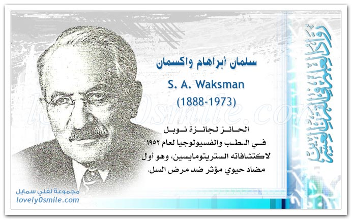 سلمان أبراهام واكسمان S. A. Waksman