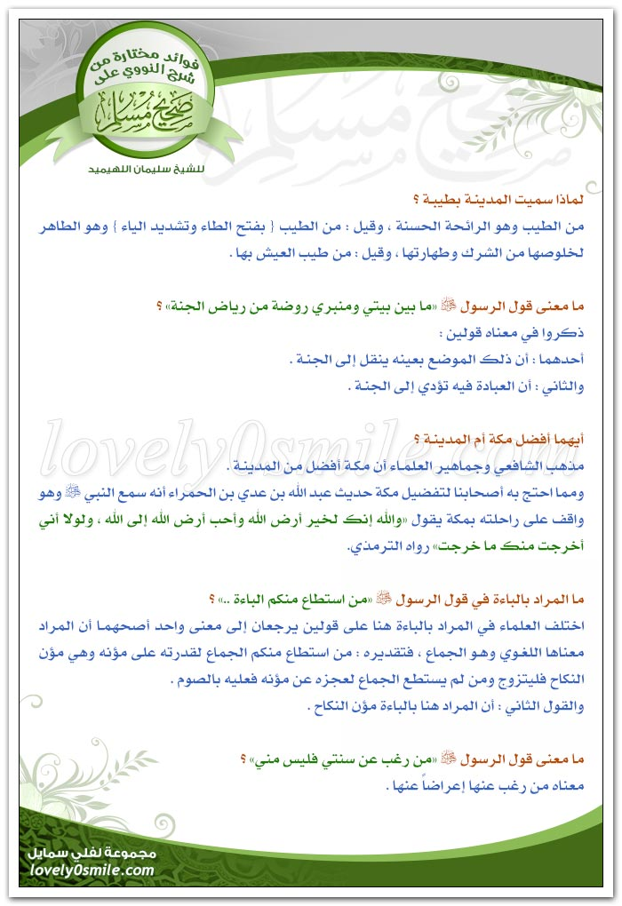fawaed-072.jpg