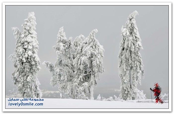صور رائعة لجمال الشتاء