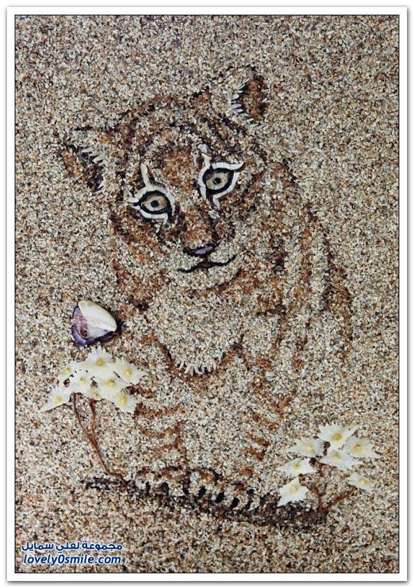 الرسم بالصدف والرمل