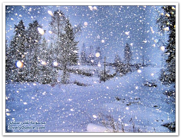 صور رائعة لتساقط الثلوج