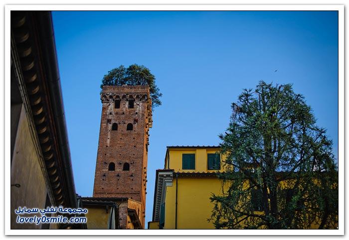 برج Guinigi في إيطاليا يتزين بحديقة أشجار البلوط أعلاه