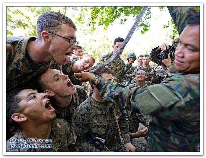 دوراة البقاء على قيد الحياة للجنود في تايلاند