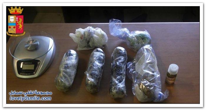 تهريب المخدرات بواسطة الكلاب في إيطاليا