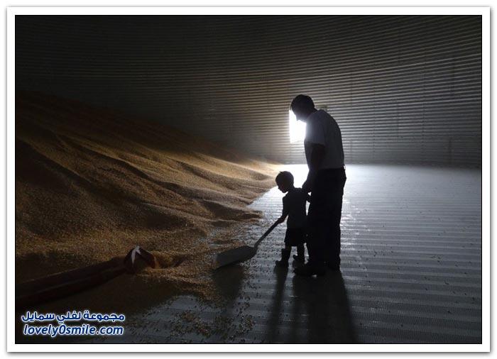مسابقة مجلة سميثسونيان لأجمل صورة 2013