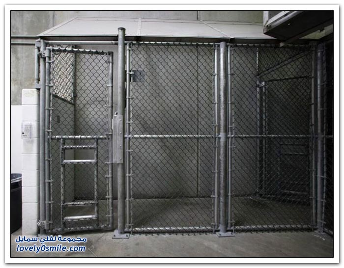 صور من داخل معتقل غوانتانامو همجية هذا العصر