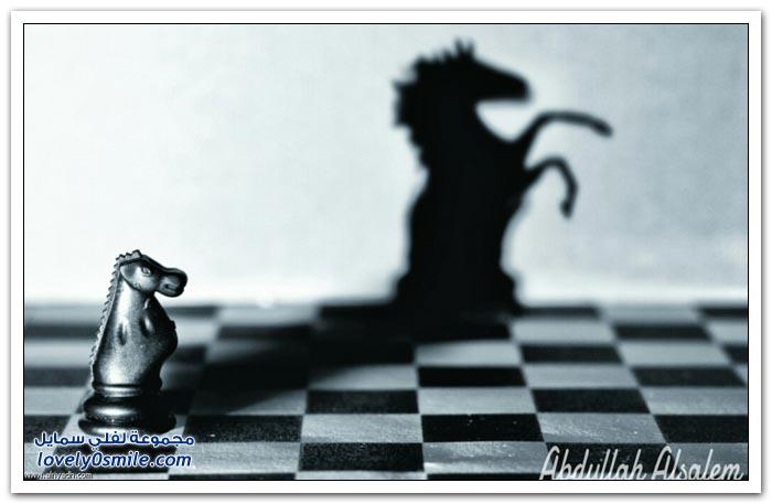 الصورة تتكلم للمصور عبدالله السالم