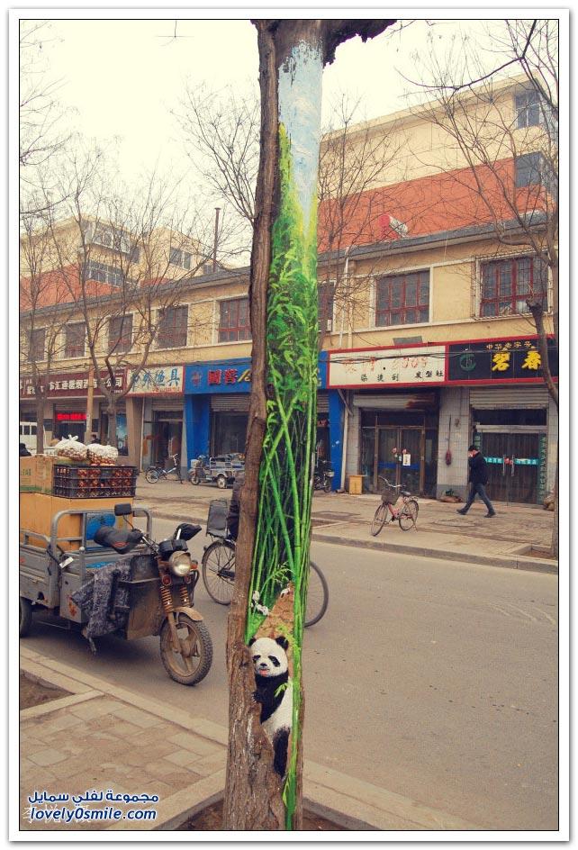 فتاة صينية ترسم صور حيوانات على الأشجار باحترافية