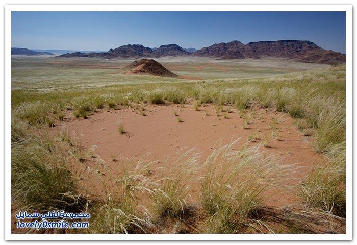 الدوائر الخرافية الغامضة في ناميبيا