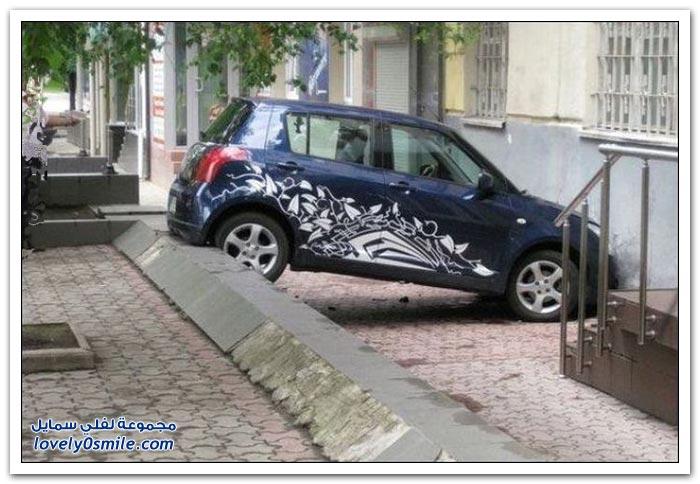 نتائج قيادة المرأة للسيارة
