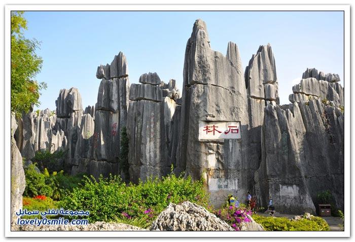 شيلين غابة الأحجار في الصين